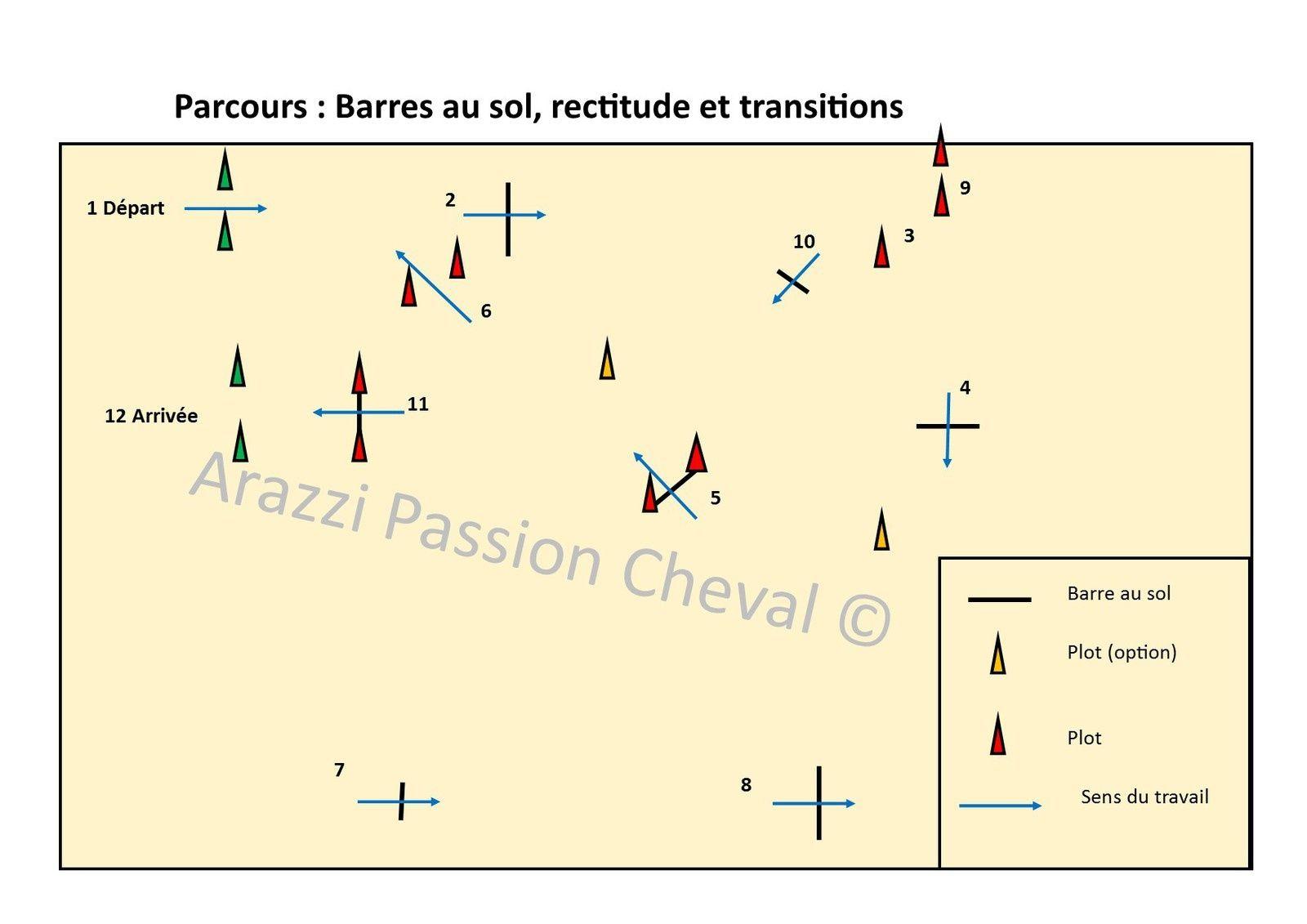 Exercice : Obstacle A partir G9  Horse barns, Horse barn, Math