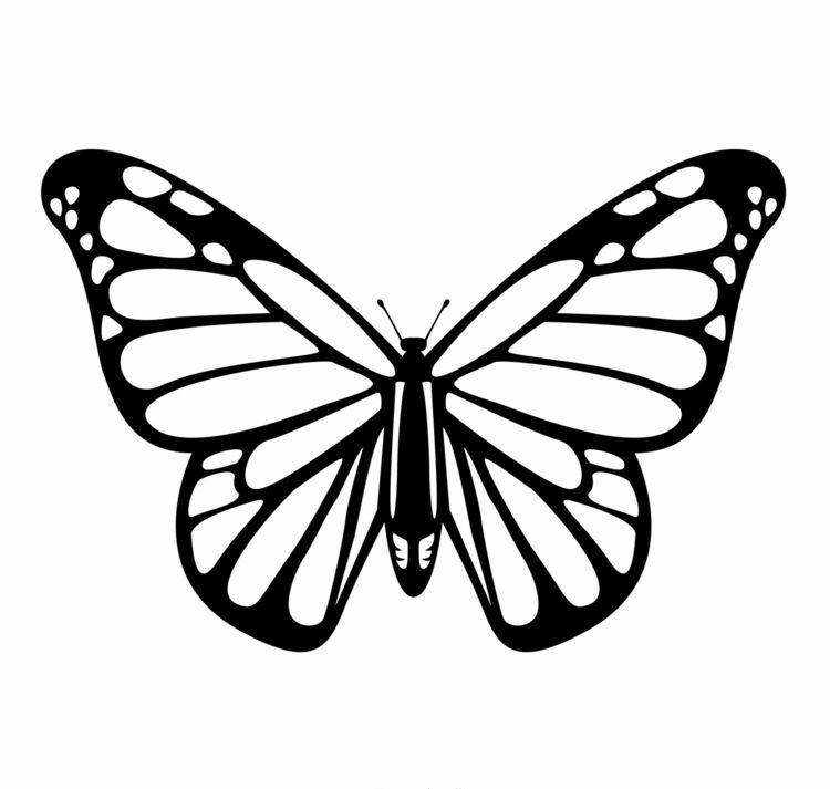 Einen Schmetterling Auf Das Fenster Malen Tier Schablone Schmetterling Vorlage Schmetterlingskunst
