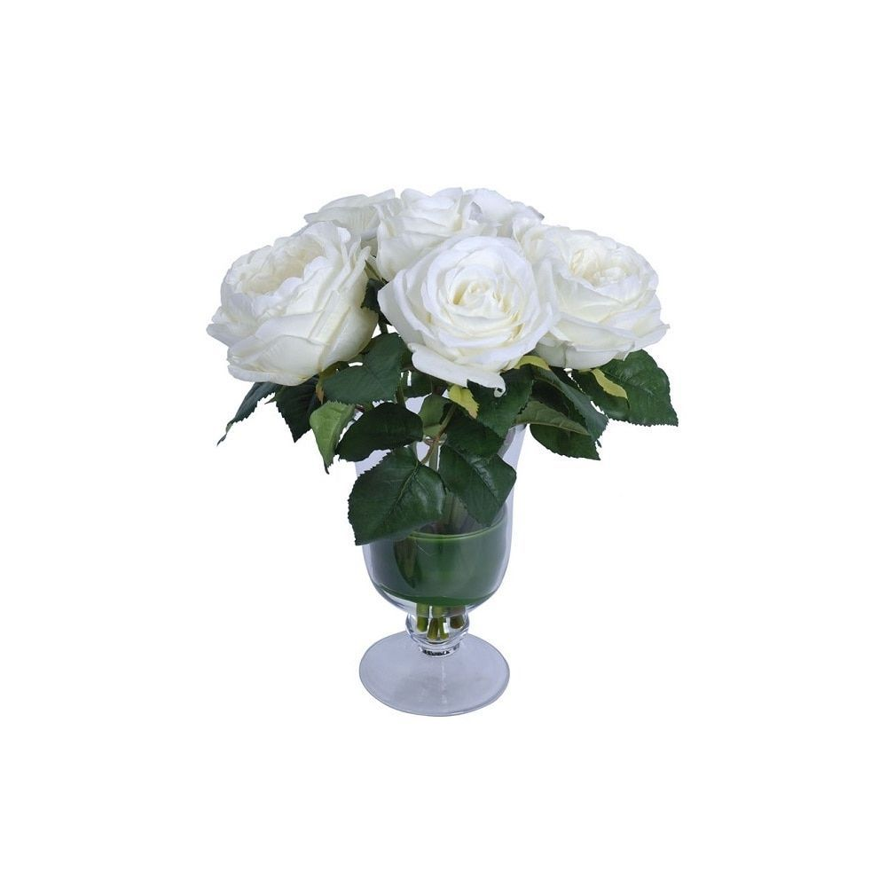 White Eagle Flowers Choice Image Fresh Lotus Flowers
