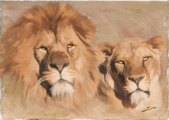 Lions digital wildlife art fine art photography by Iain S Byrne, £8.50