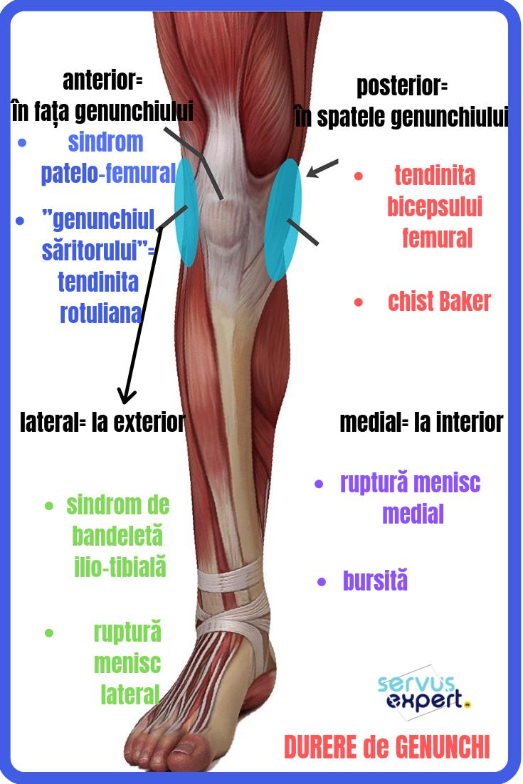 Varice dureri la nivelul viței, Când apare umflarea musculară