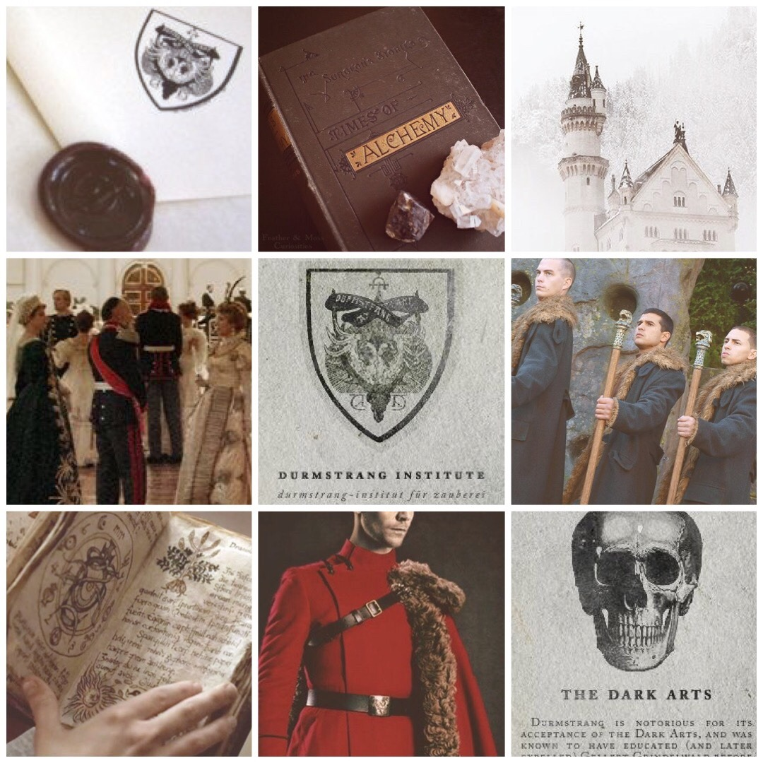 Durmstrang Institute Moodboard Hogwarts Aesthetic Coraline And Wybie Warriors Imagine Dragons When we first hear of it, it is run by headmaster professor karkaroff. pinterest