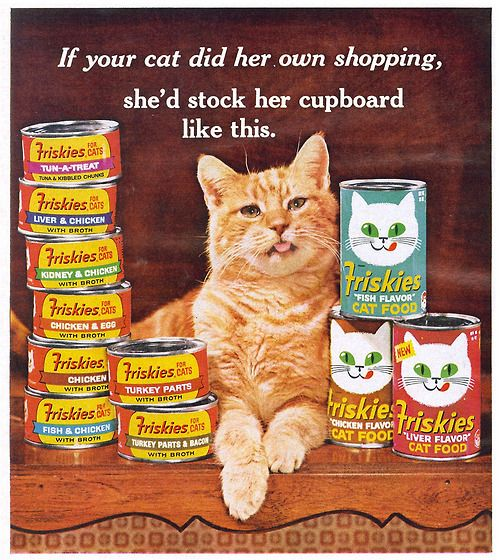 Friskies Cat Food ad in McCall's magazine 1965 .. now I
