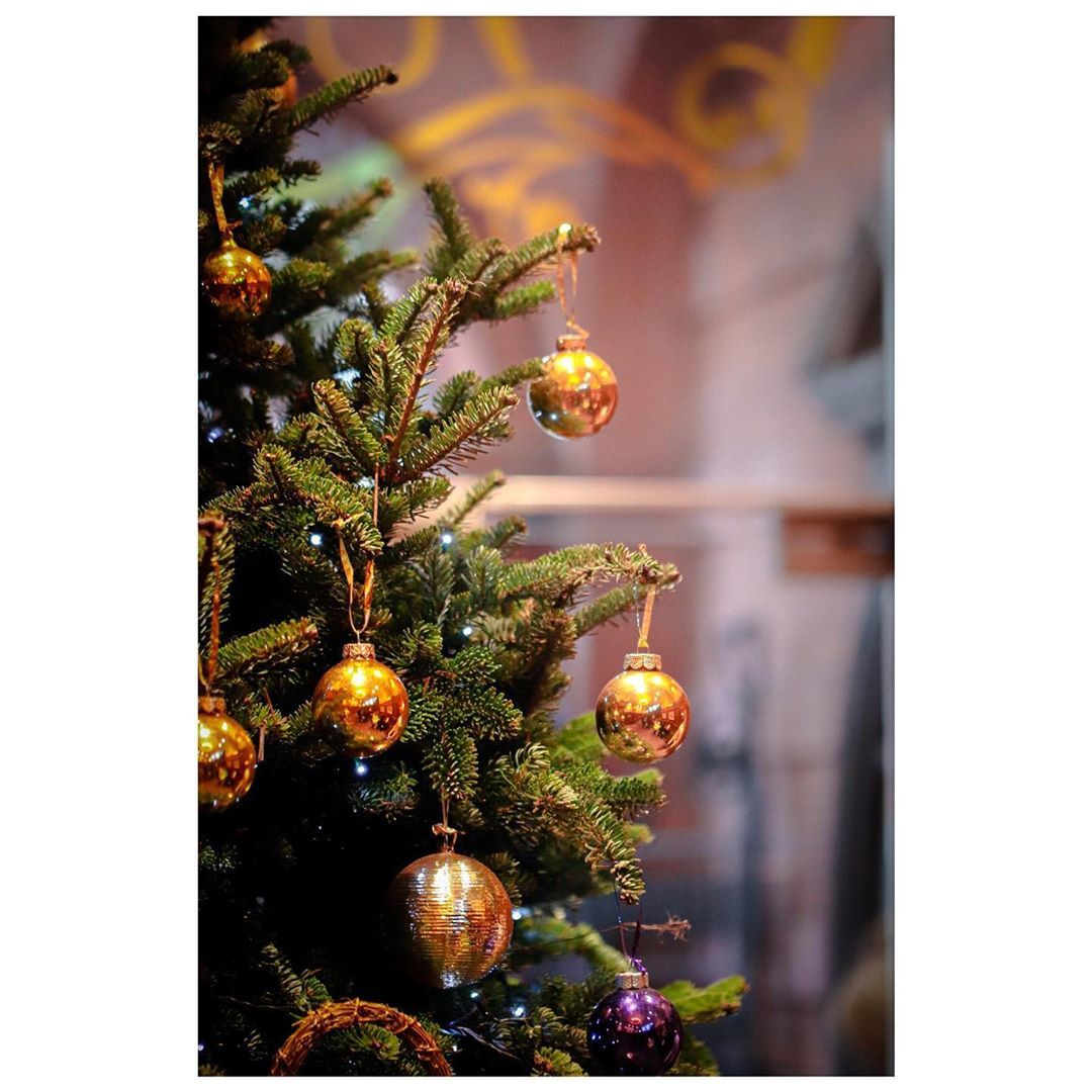 Photo of Lovely Christmas colour  #christmastrees #presents #navidad #christmasgift #gift…