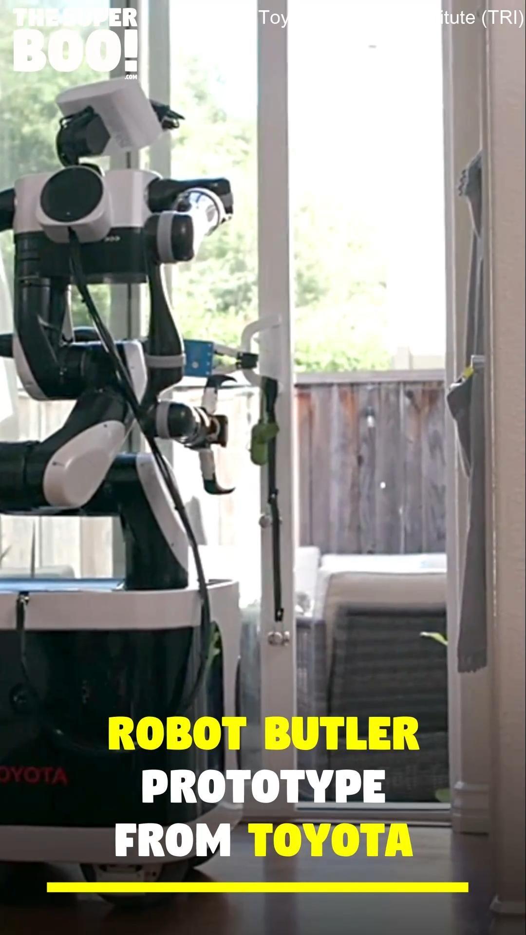 AI robot butler!