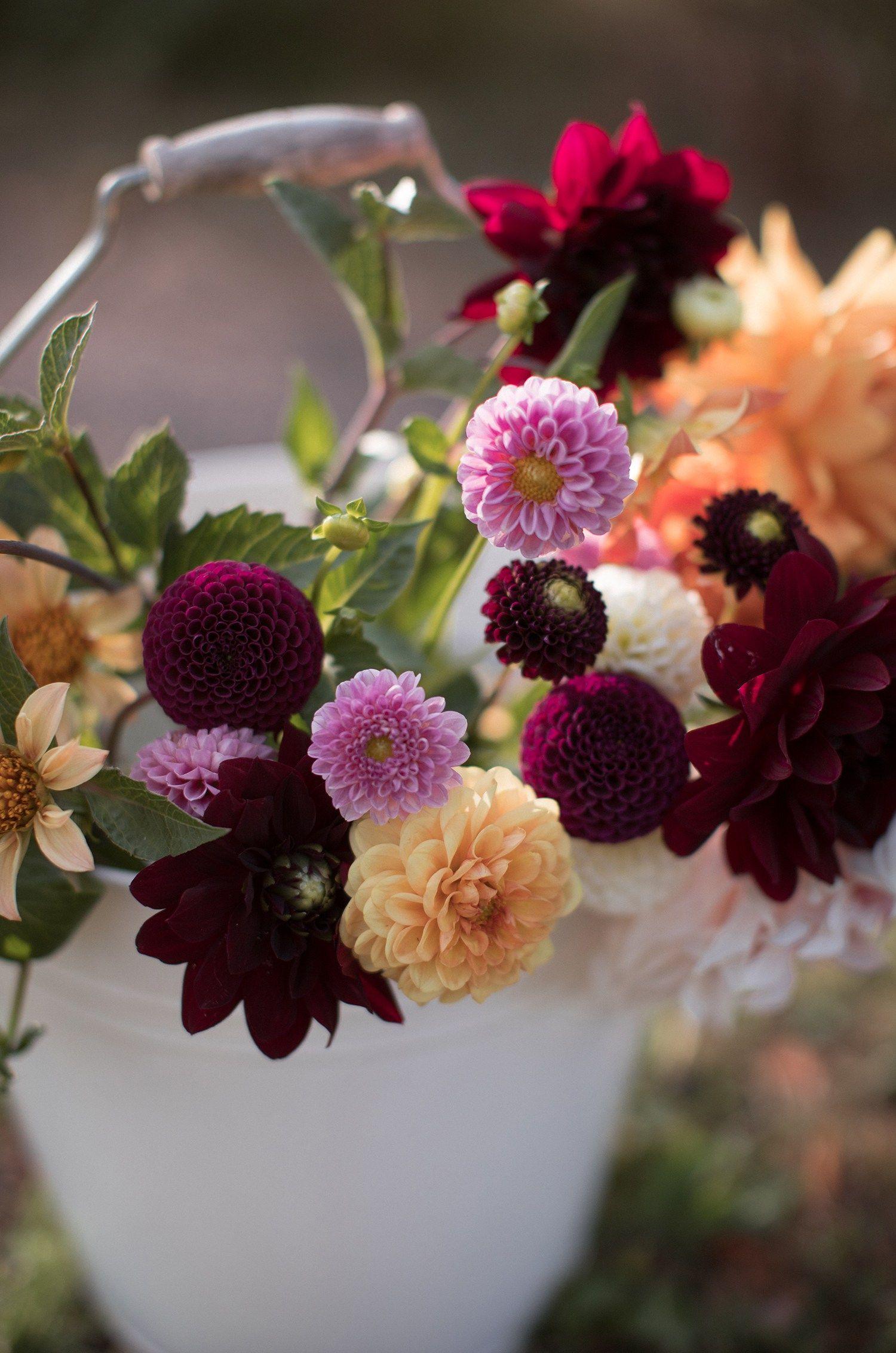 8q0a6164 Cvety Cvetochnye Kompozicii Floristika