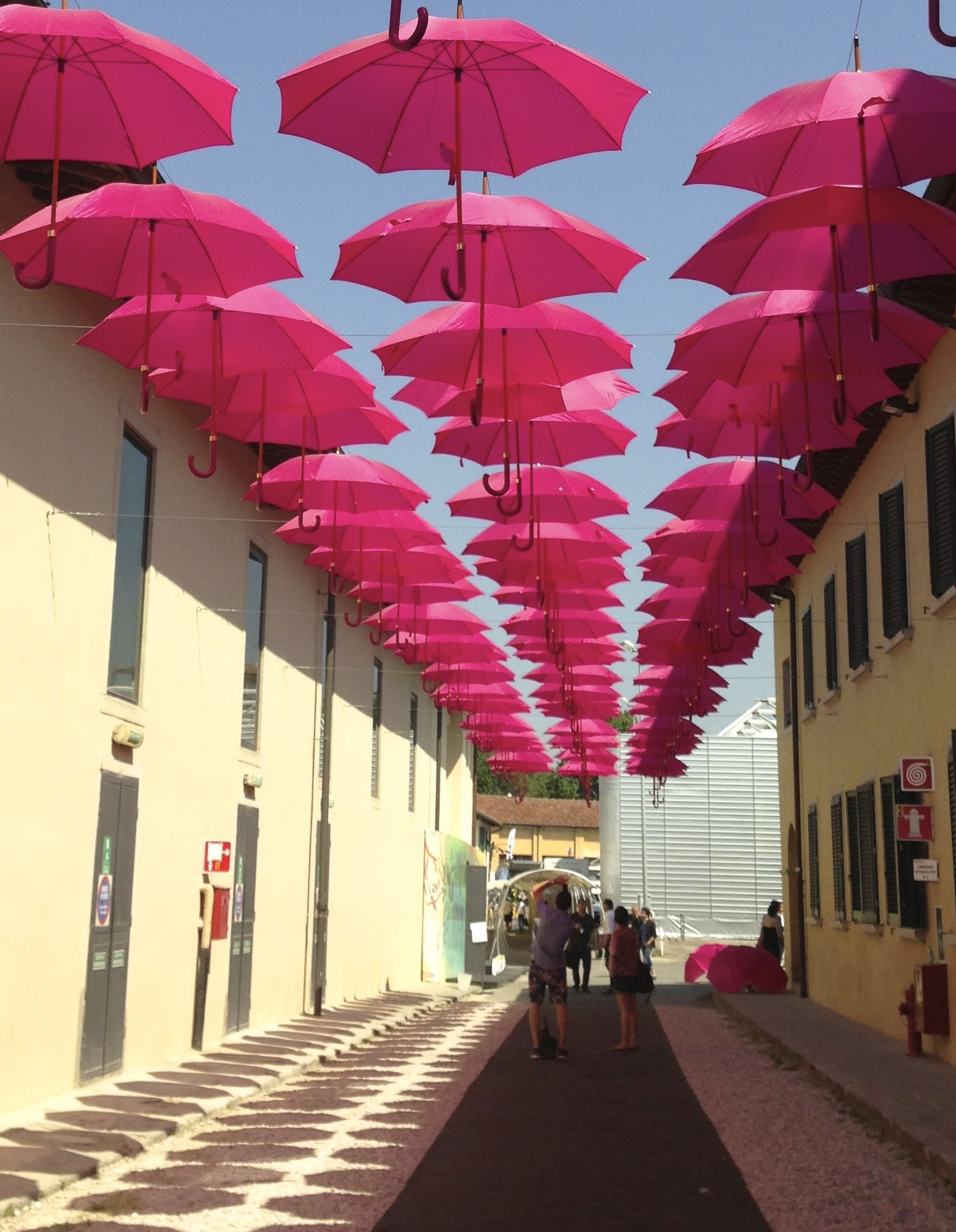 pink umbrellas toward W!