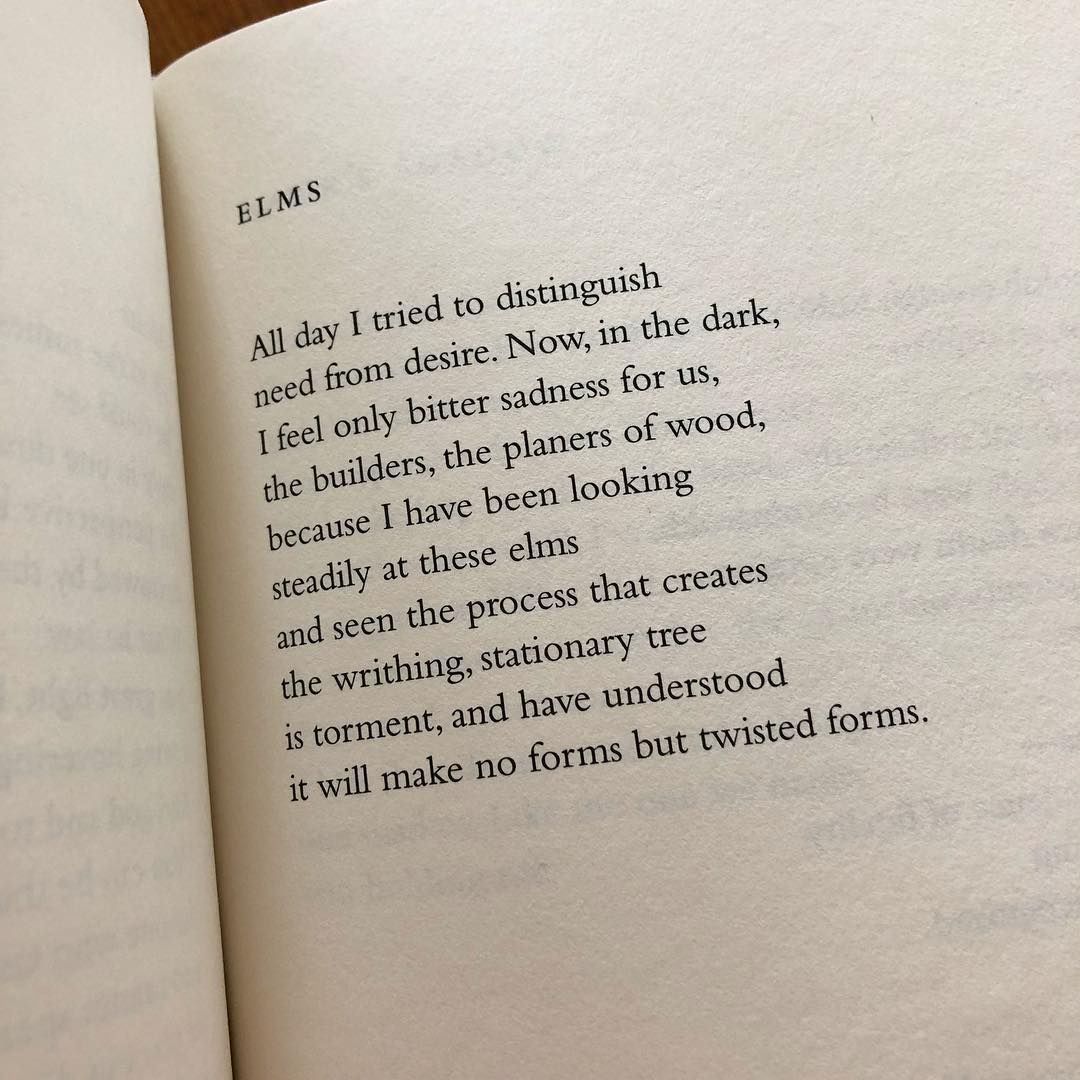 Stephanie Danler On Instagram Need From Desire From The Collected Poems Of Louise Gluck Smdpoets Louisegluck N Louise Gluck Poems Collection Of Poems