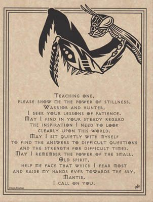 MANTIS PRAYER POSTER A4 SIZE Wicca Pagan Witch Witchcraft BOOK OF SHADOWS picclick.com