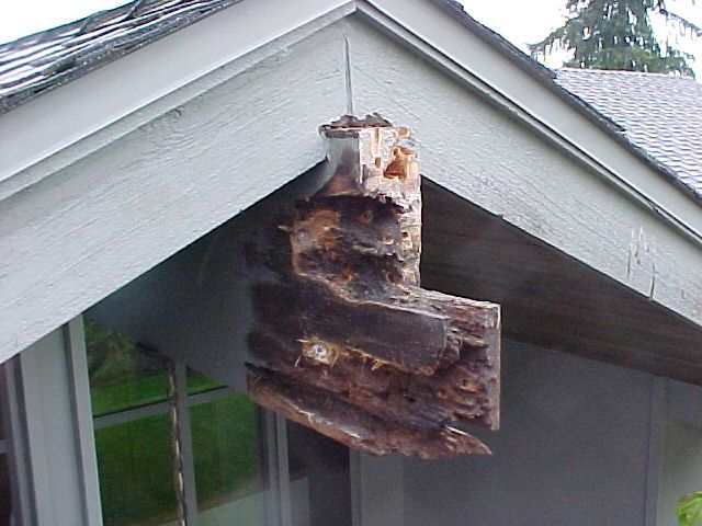 Welcome Inwood Restoration Of Wood Rot And Wood Rot Repair Restoration Outdoor Decor Repair
