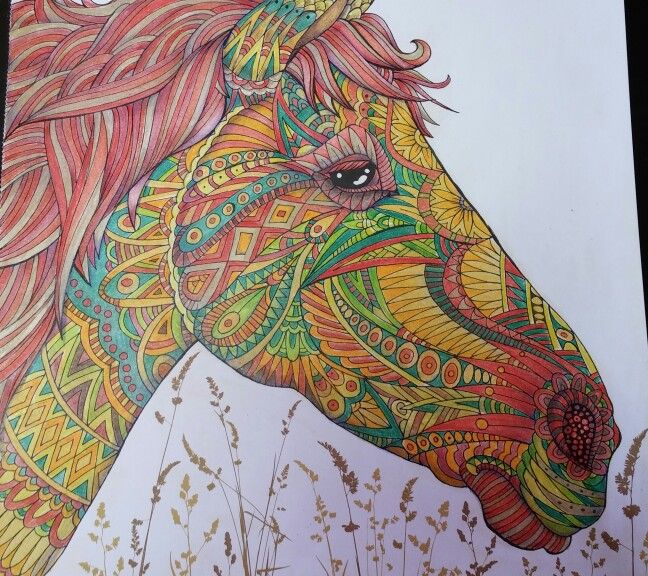 From The Menagerie Coloured By Me Animal Portraits Art Designs Coloring Books Animal Coloring Books