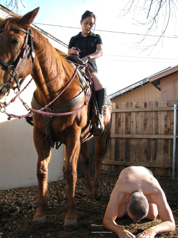 Ponyslave