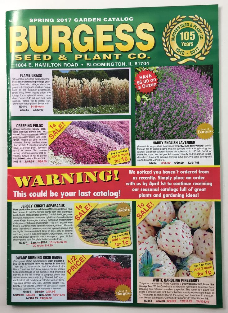 60 Free Seed Catalogs And Plant Catalogs For Your Garden Plant Catalogs Seed Catalogs Seeds