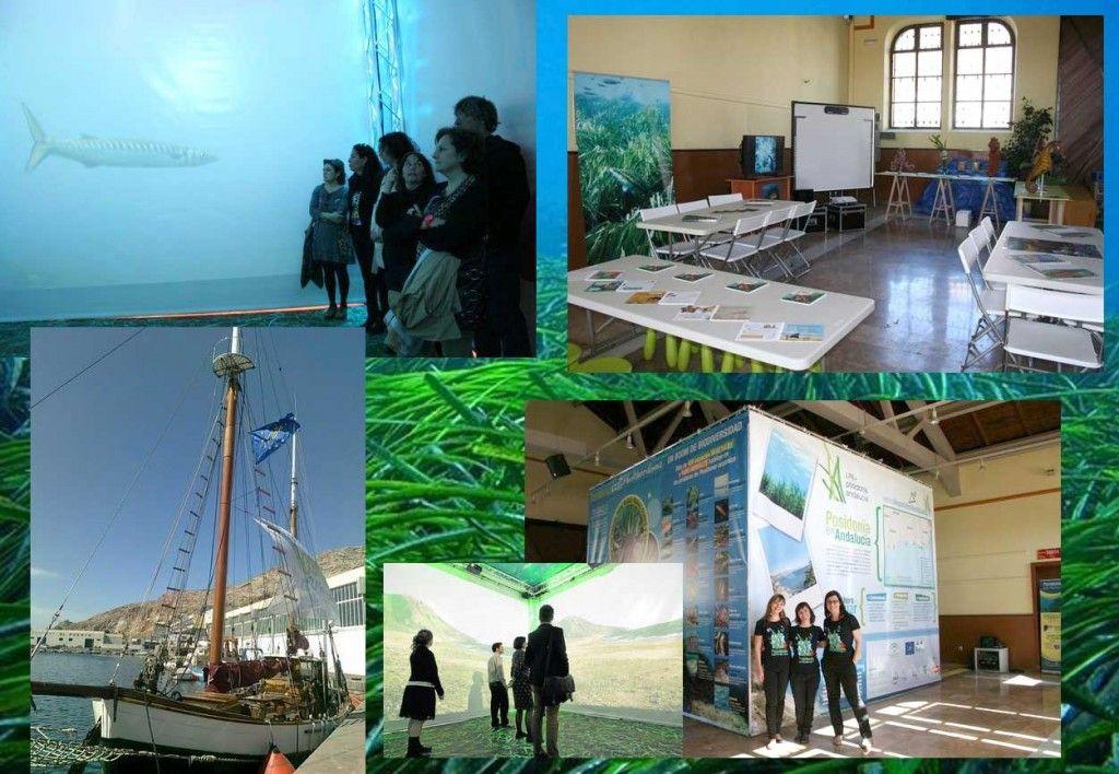 Exposición Life Posidonia Mediterráneo andaluz