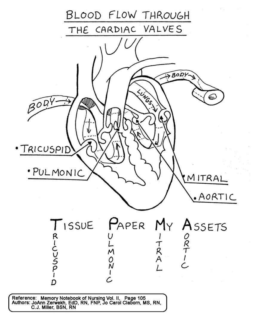 Aplus compendium ms medical school studying nursing