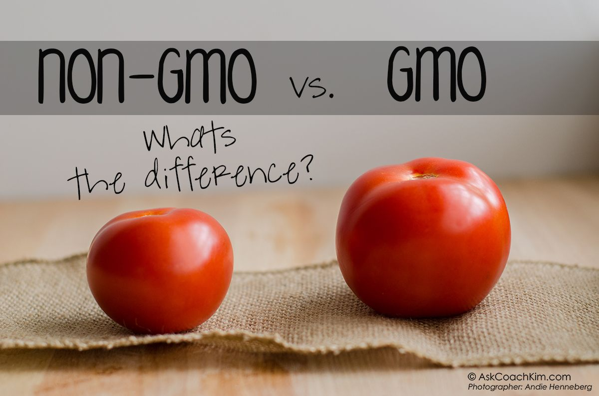 Gmo Vs Non Gmo What Is The Difference Anyway