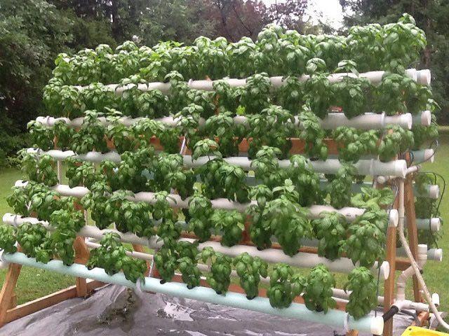 C mo crear un sistema hidrop nico casero 7 verdeurbano - Invernadero casero terraza ...