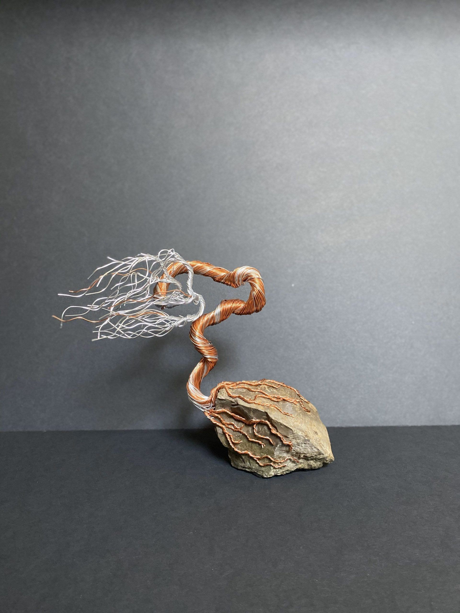 "Wire Bonsai Tree Sculpture - Modern Art ""Tenacity""#art #bonsai #modern #scul...#art #bonsai #modern #scul #sculpture #tenacityart #tree #wire"