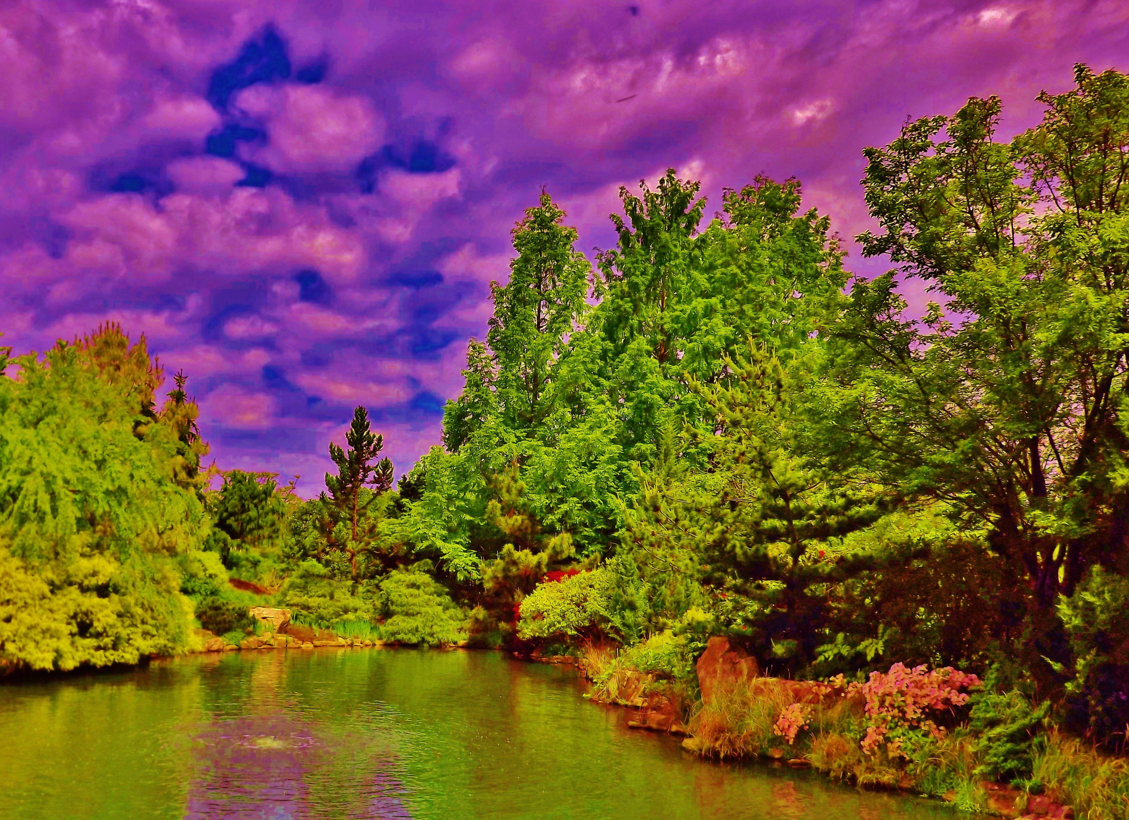 """""""Ginter Botanical Garden"""" (Lewis Ginter in Richmond) by"""