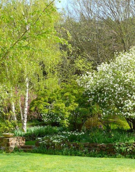 Pin de Trish en Gardening Pinterest Piscinas, Jardín y Paisajes - paisaje jardin