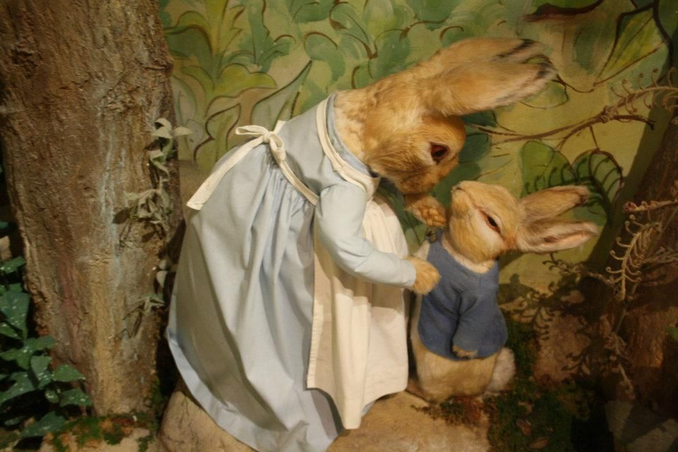 Peter Rabbit gets told off, Beatrix Potter Museum, The Exhibition List blog