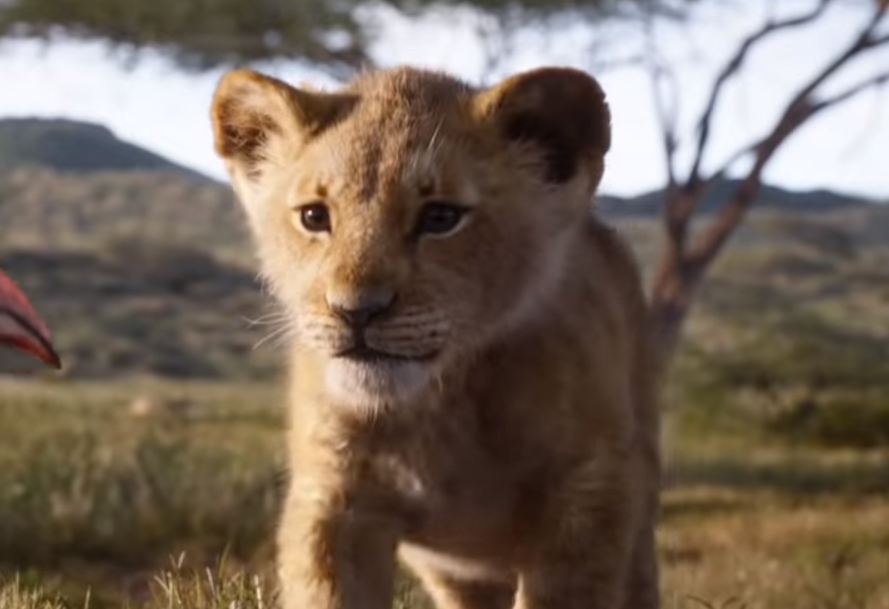 Le Roi Lion 2019 Streaming Vf Complet