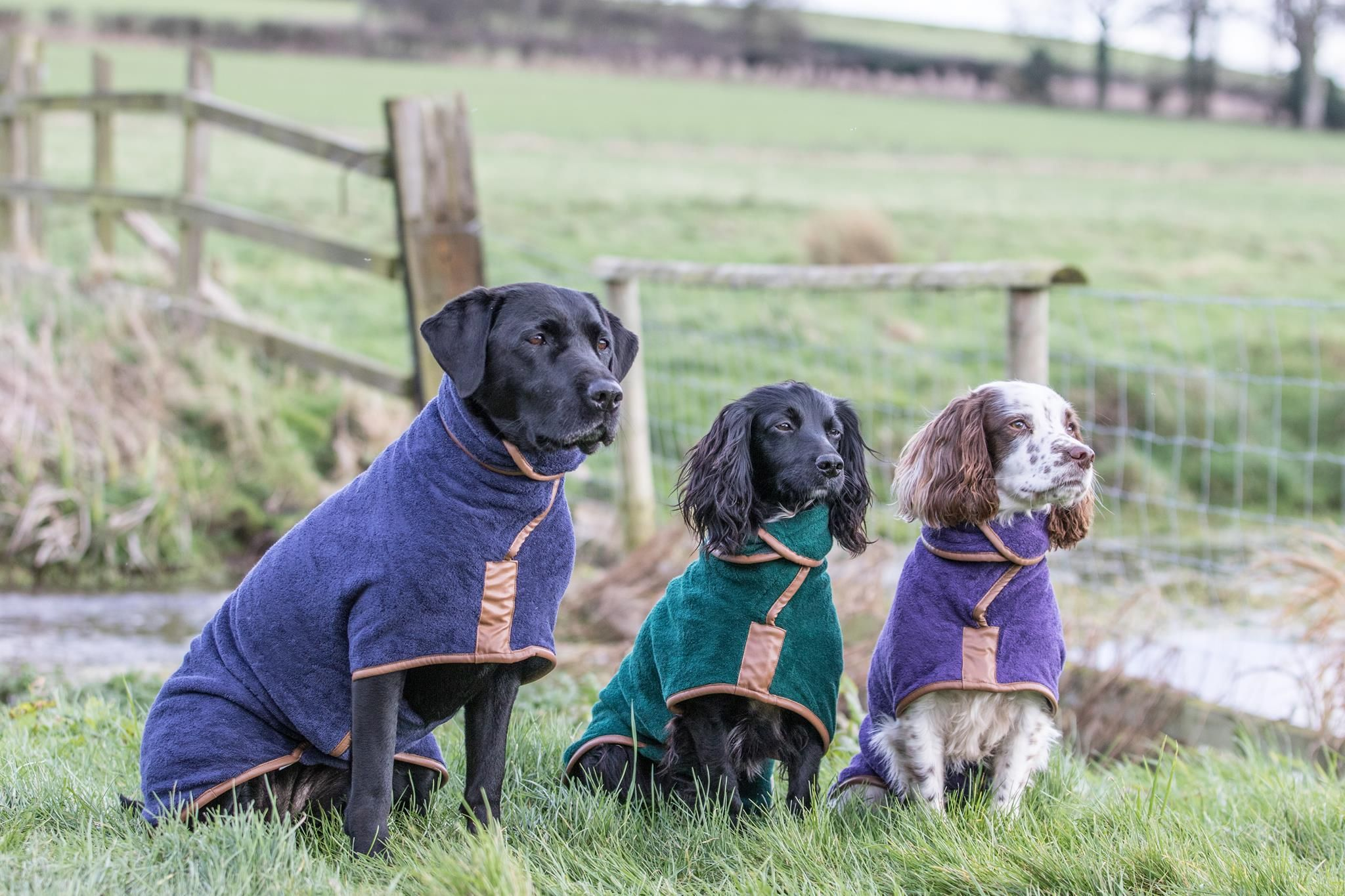 Ruff And Tumble The Ultimate Dog Drying Coat King S Lynn