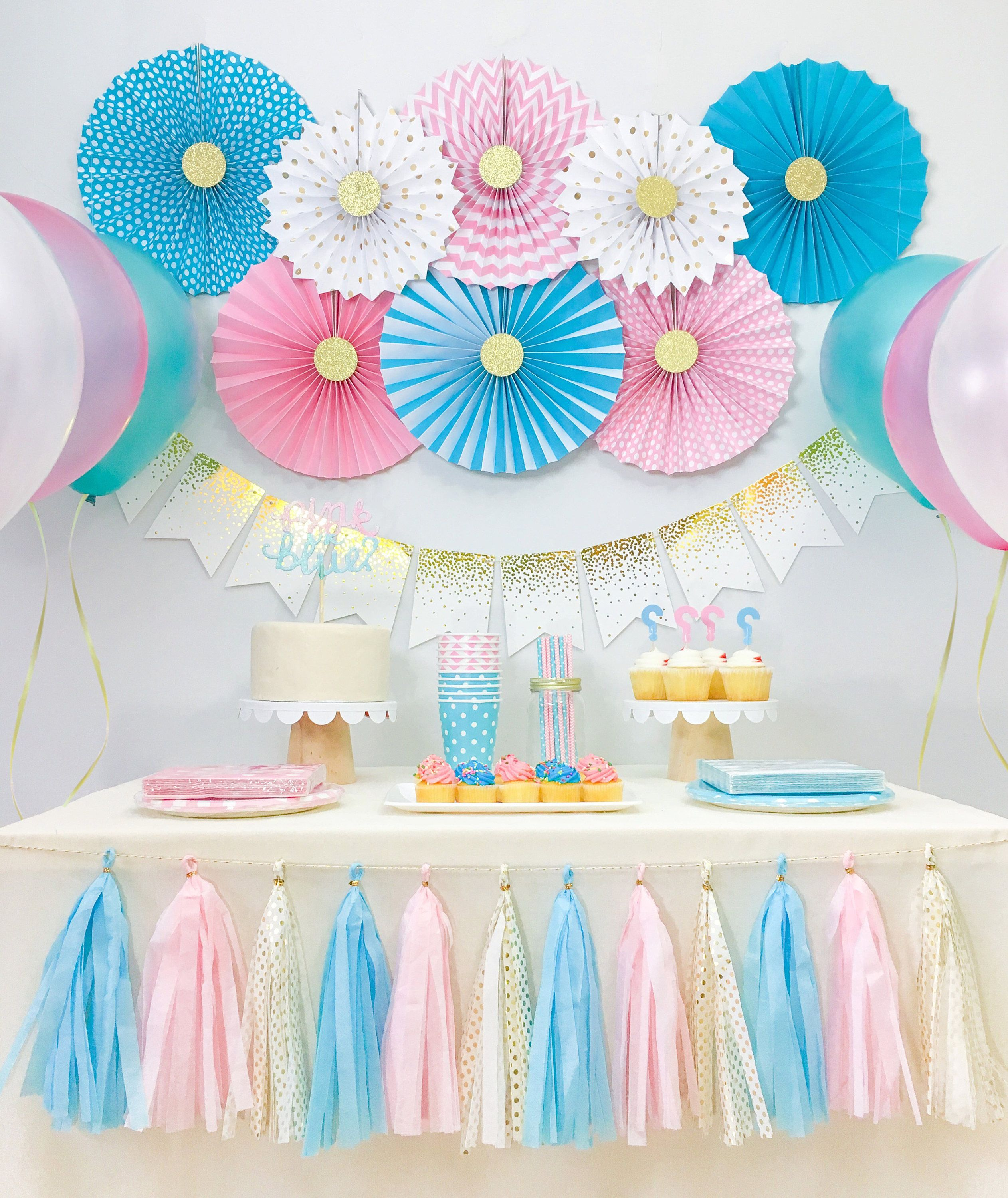 Gender reveal baby shower decorations boy and girl twins for Baby shower decoration ideas for twin girls
