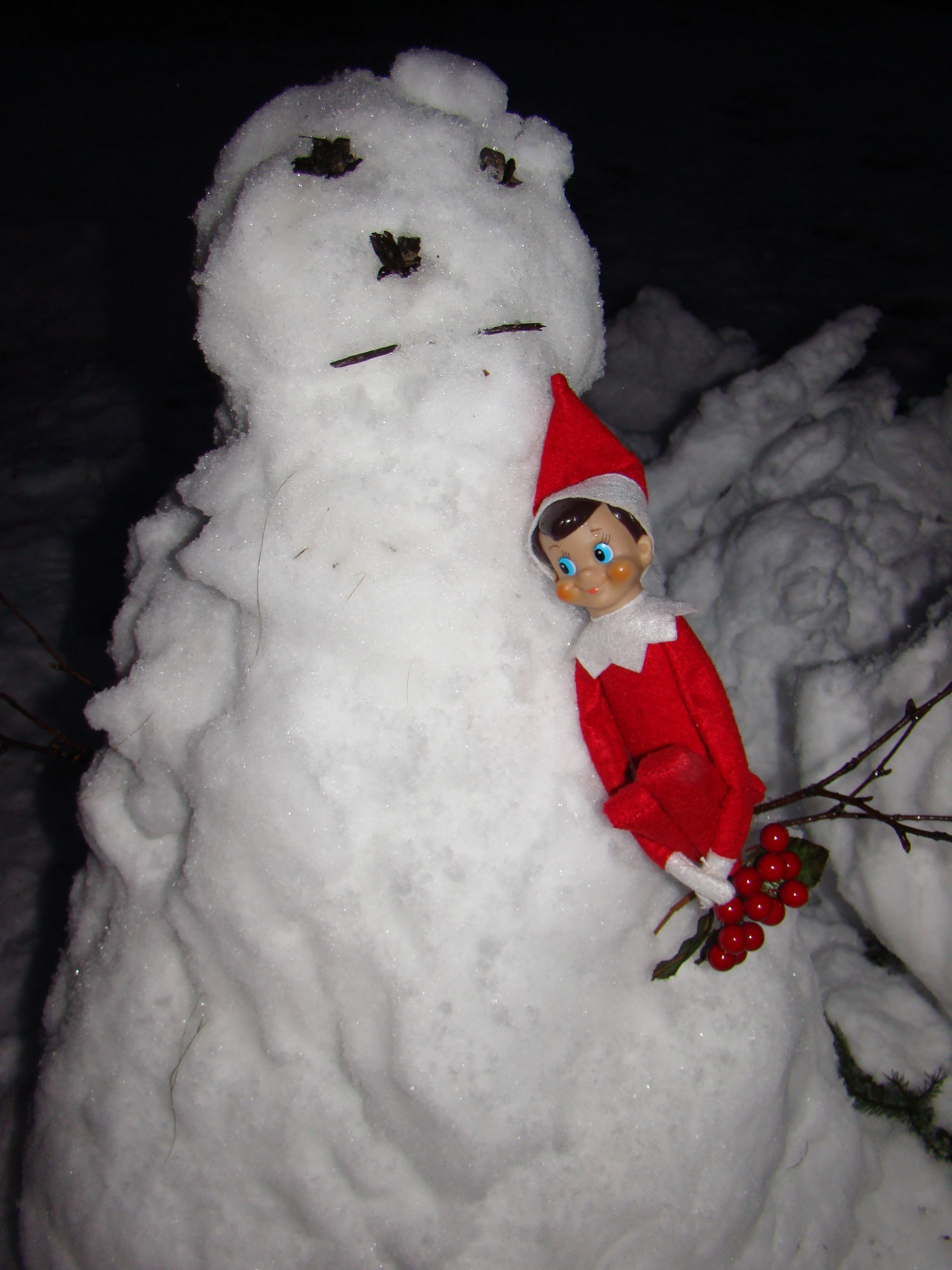 Henry makes friends with the neighbours snowman!