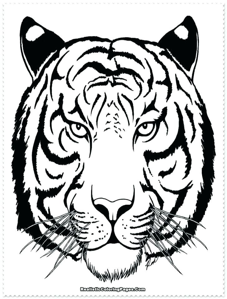 Coloring Page Of Tiger Free Tiger Coloring Pages Free Tiger Coloring ...