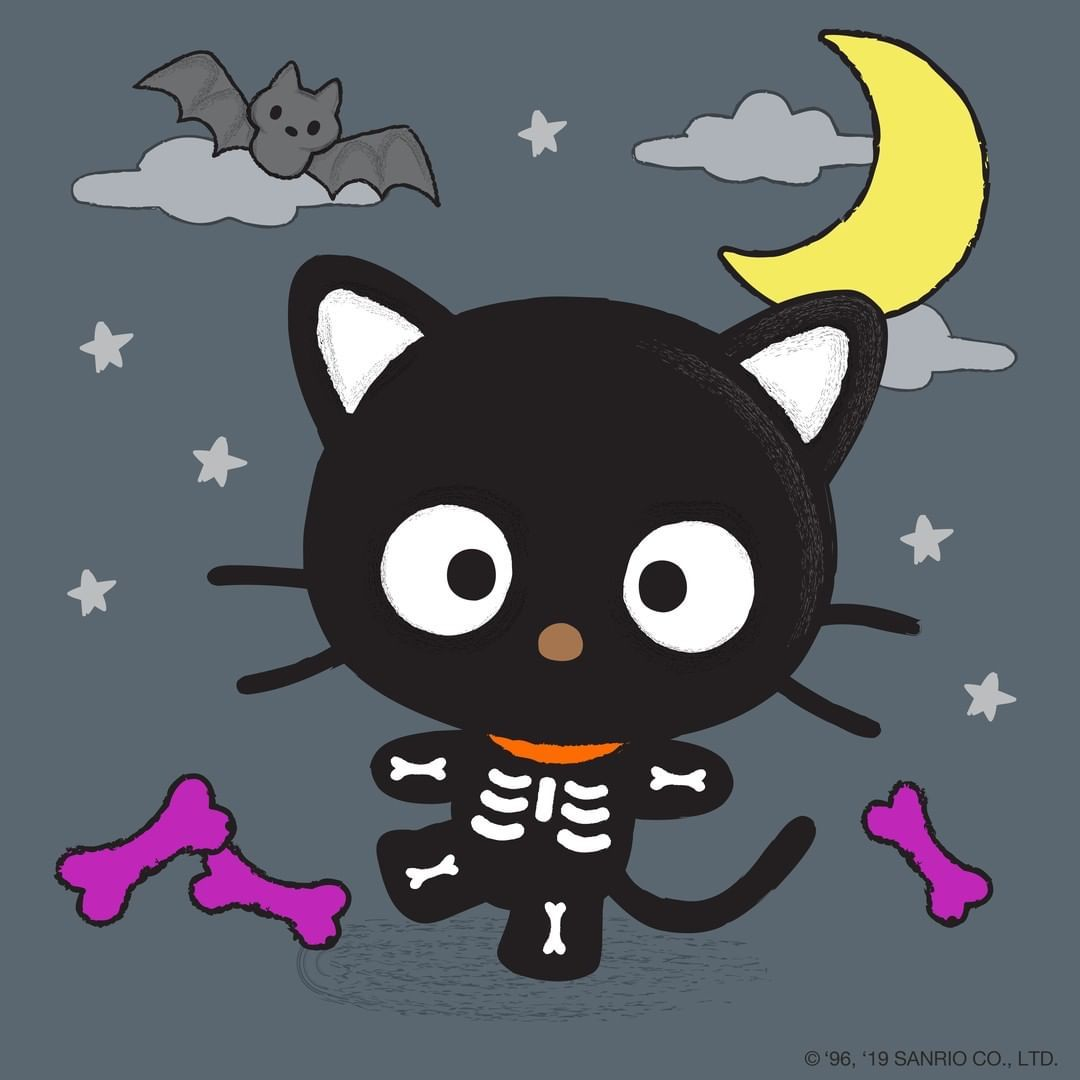 Pin by misery club on Sanrio (2020) Black cat day