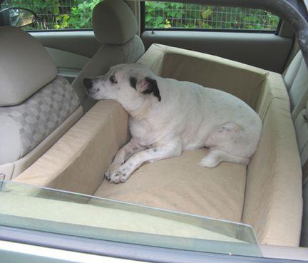 si yo fuera un perro, yo sin duda me quiero esto.  El infierno, pude disfrutar de eso para dormir durante los viajes por carretera.