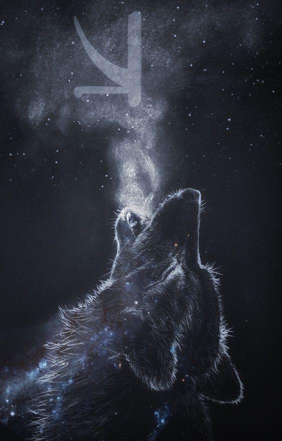 Kshmr Kshmrlogo Logo Wolf Wallpaper