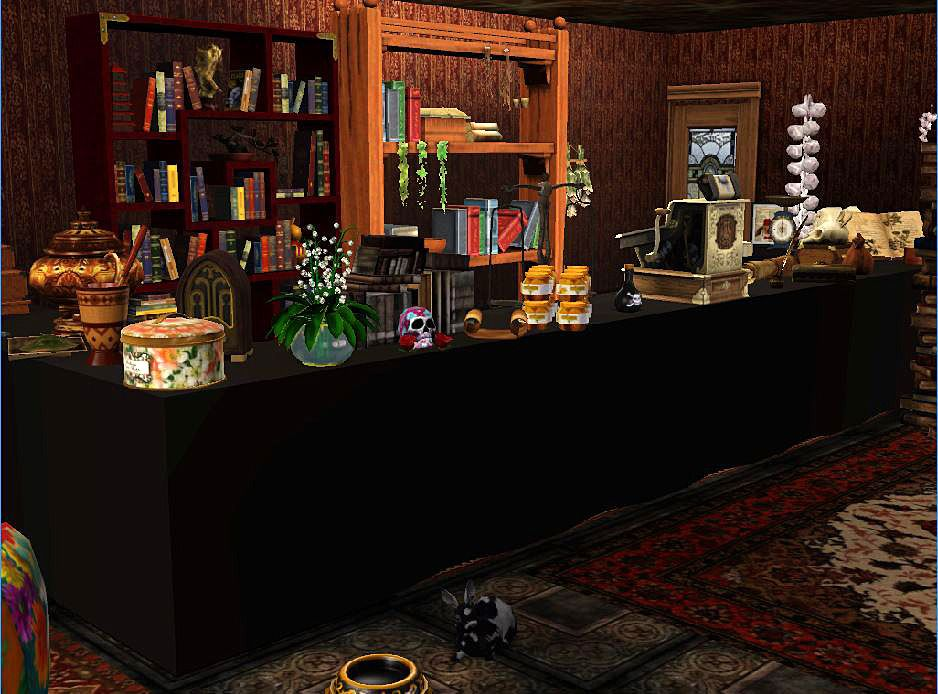Pin by Siggy Lou on Fantasy, Supernatural, Steampunk Sims ...