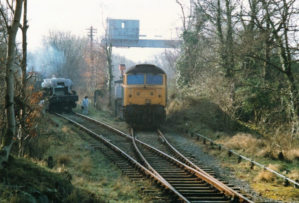 7edf8e74a09f427aaf1ae7ec873a2e87 - Sixty years since the last train to Cwm Prysor #2