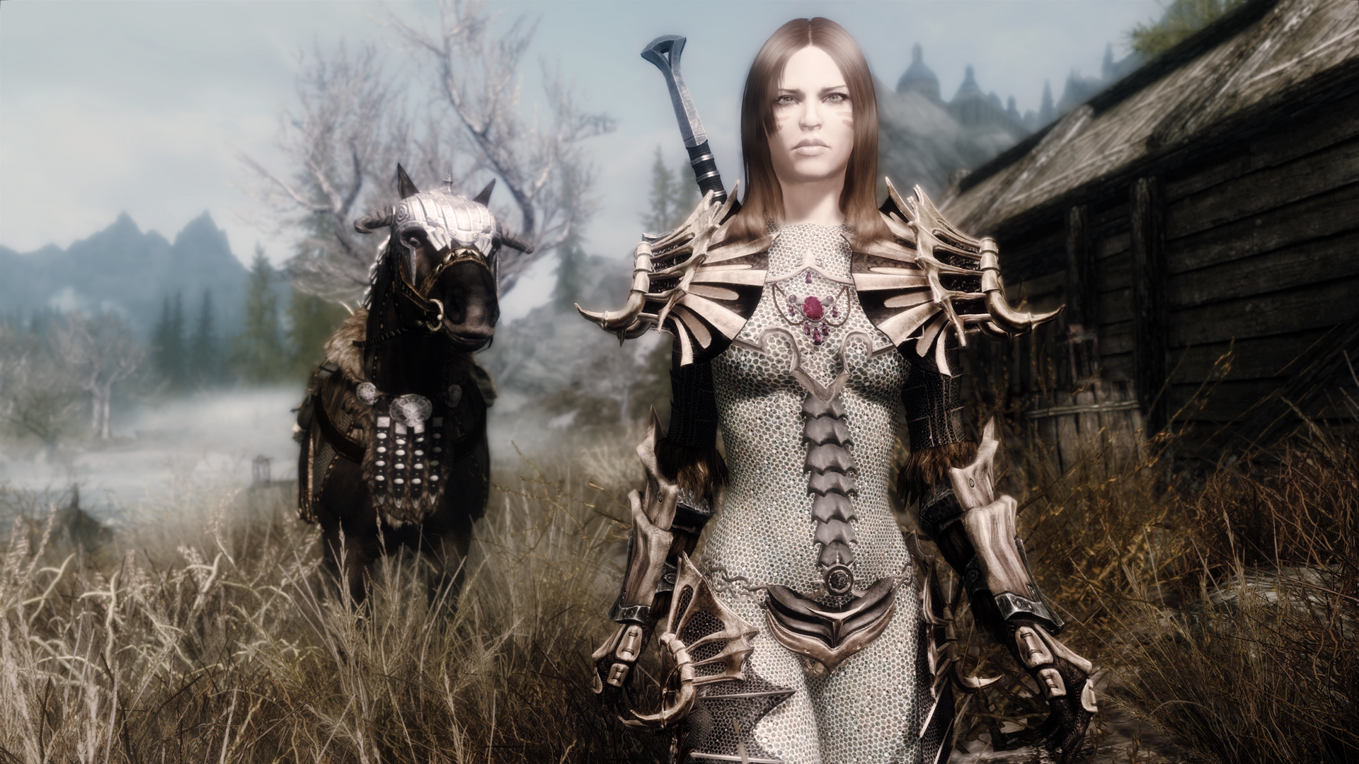 female armor mods skyrim   The-Elder-Scrolls-V-TESV-Skyrim