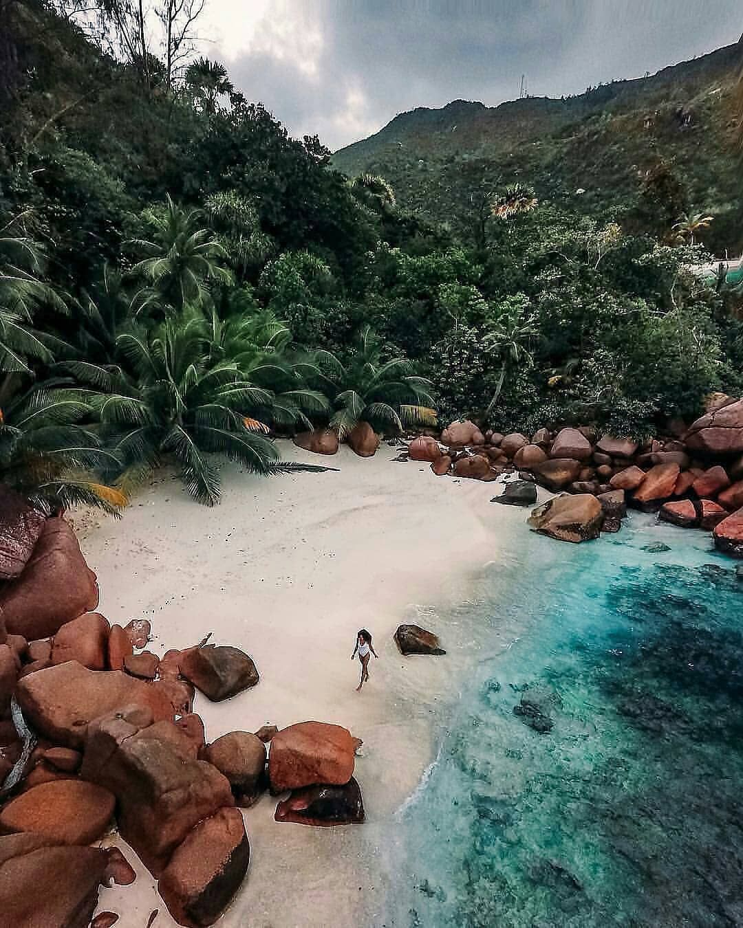 "Seychelles Island Beaches: Travel Adventure 🌵 Beach 🌴 On Instagram: ""Who Is In For A"
