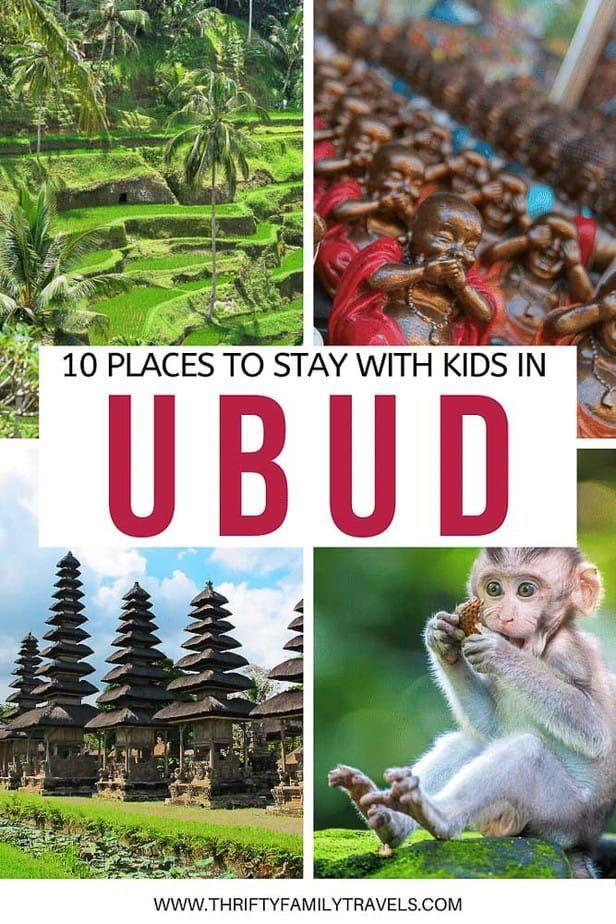 Best Value Ubud Family Accommodation - Thrifty Family Travels #style #shopping #styles #outfit #pretty #girl #girls #beauty #beautiful #me #cute #stylish #photooftheday #swag #dress #shoes #diy #design #fashion #Travel