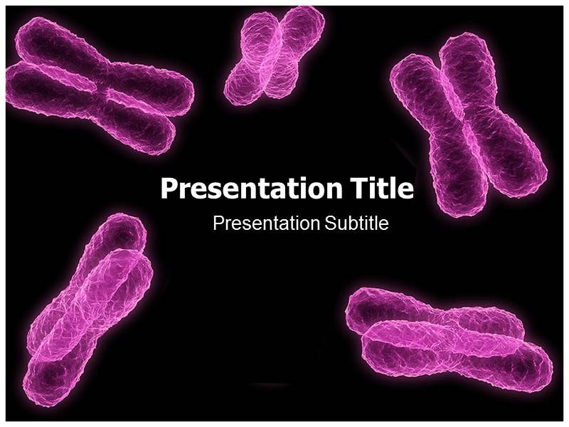 The chromosome powerpoint template free has been designed to help the chromosome powerpoint template free has been designed to help in the study of chromosome and genetics there are different templates prepared in order toneelgroepblik Choice Image