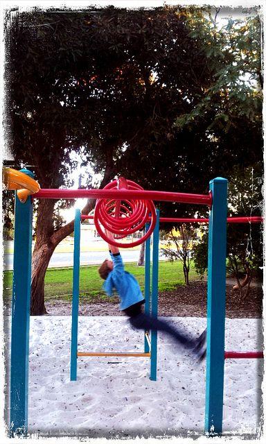 #photoadayJuly Day 4 Fun - Swing free
