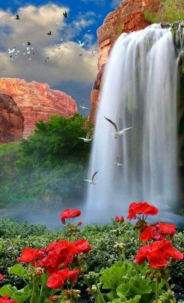 O mais lindo da natureza | inspiration | Lindas paisagens ...