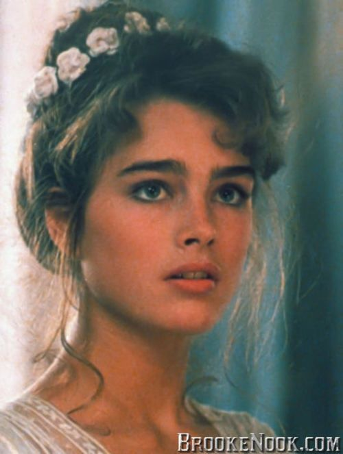 Brooke Shields Eyebrows 80s Google Search Makeup Pinterest