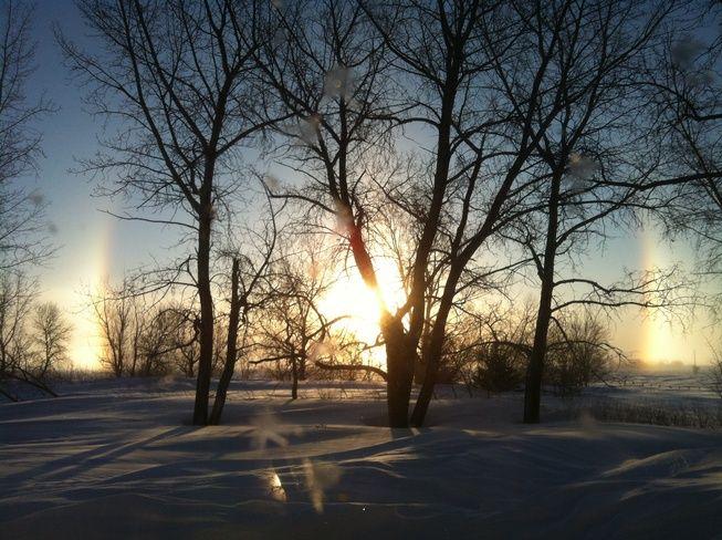 Taken at Griffin, Saskatchewan