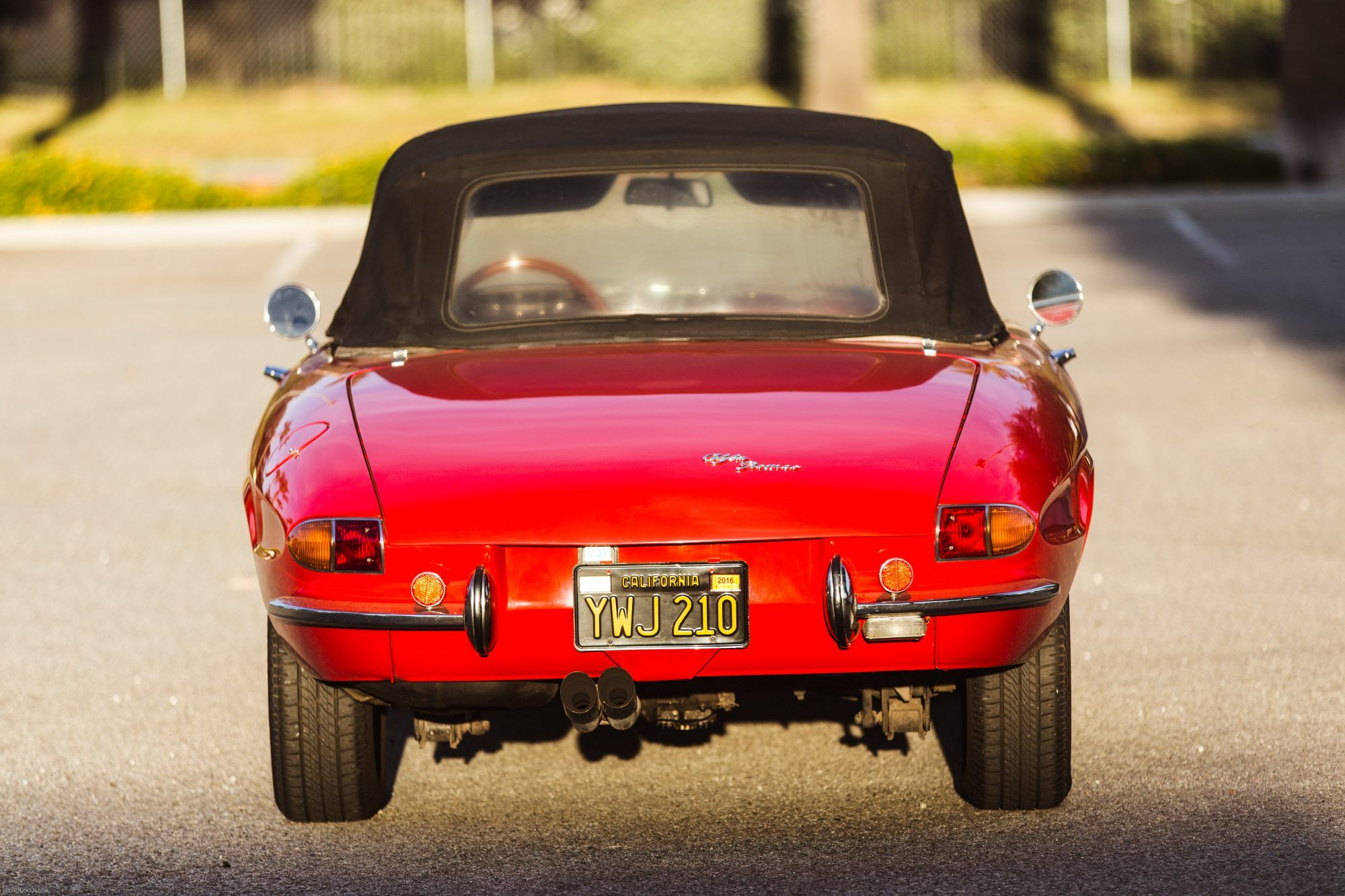 1966 Alfa Romeo Duetto Spider