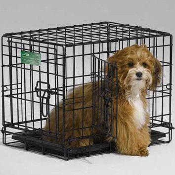 Midwest Homes For Pets Icrate Double Door Pet Crate Dog Crate Pet Crate Folding Dog Crate