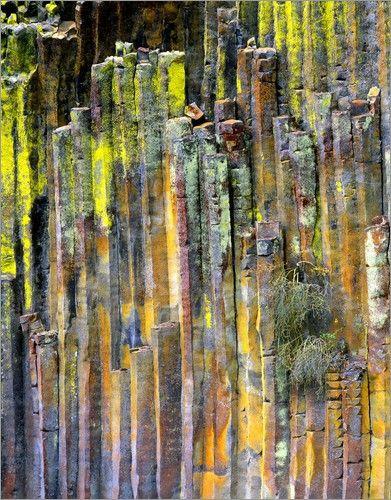 Colonnes de basalte recouvertes de lichen. / Lichen-covered columnar basalt formation. / By Steve Terrill.
