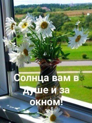 86 Odnoklassniki Utrennie Citaty Pozitiv Utrennie Soobsheniya
