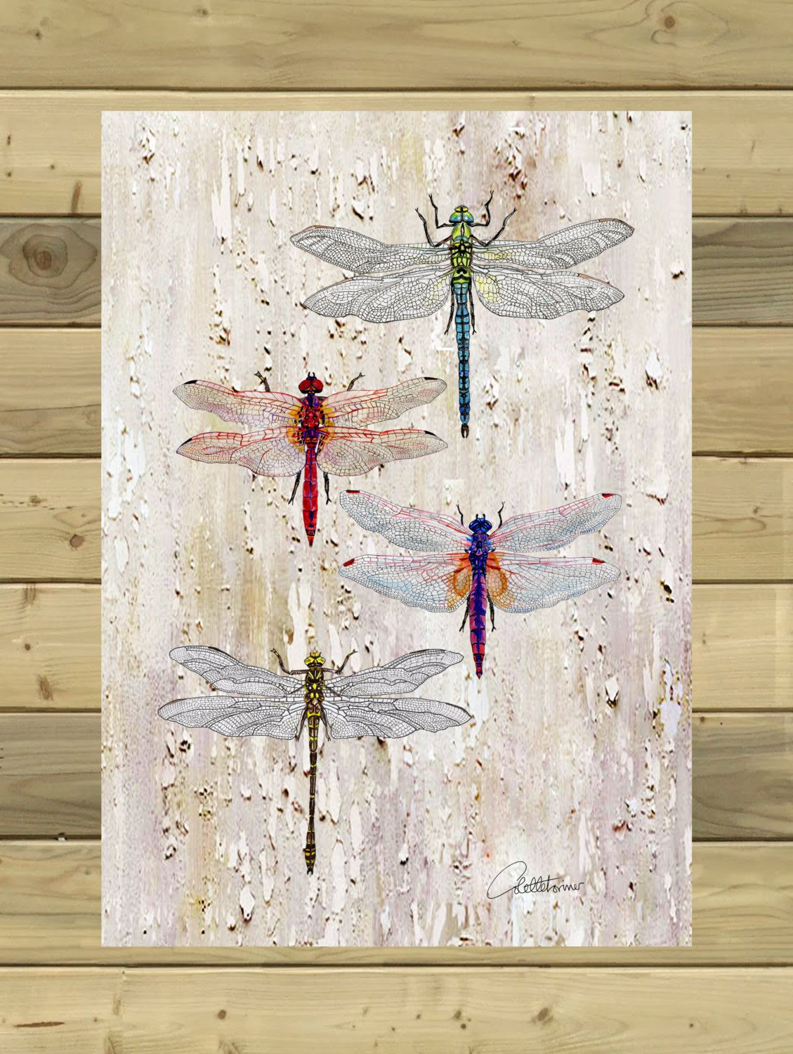 Dragonflies Wall Decor Dragonflies Print Dragonfly Illustration Dragonfly Design Wall Art