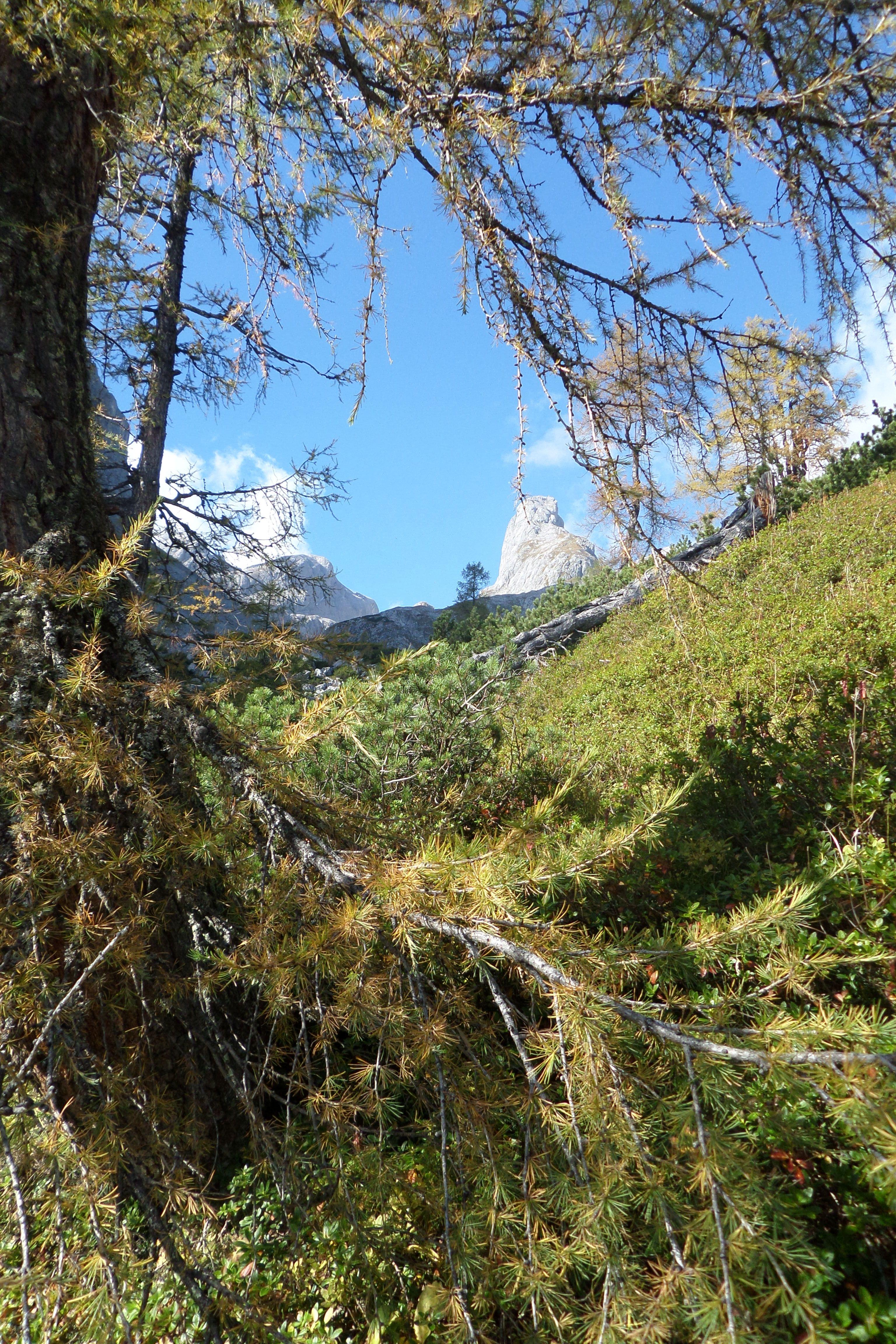 Am Fusse des Hochkönig am Ende der #Klettersteigtour bei #Salzburg in den Berchtesgadener #Alpen