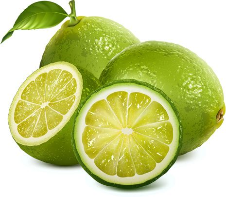 Fresh Lemon Creative Vegetable Illustration Watercolor Fruit Fruit